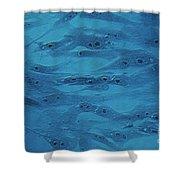 Fibroblasts Shower Curtain