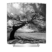 Field At Rest Shower Curtain