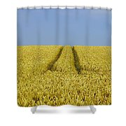Field Of Corn Shower Curtain