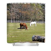 Field Of Horses Shower Curtain