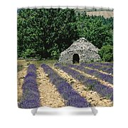 Field Of Lavender. Sault Shower Curtain