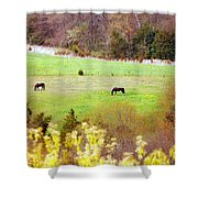 Field Of My Dreams Horses Shower Curtain