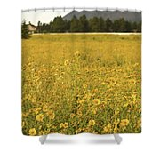 Field Of Yellow Daisy's Shower Curtain