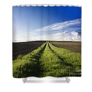 Field Path In Limagne. Auvergne. France. Europe Shower Curtain