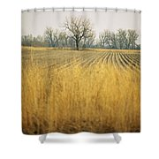 Fields At The Lillian Annette Rowe Bird Shower Curtain