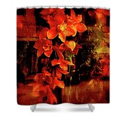 Fiery Ladies Shower Curtain