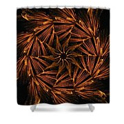 Fiery Pinwheel Shower Curtain