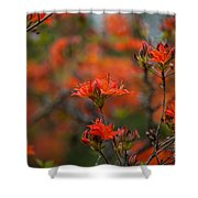 Fiery Spring Shower Curtain