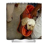 Fifi Goes To Market Shower Curtain