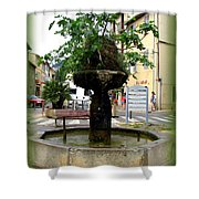 Fig Tree Fountain In Cassis Shower Curtain