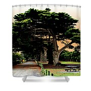 Fig Tree Lane Shower Curtain