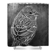 Finch Black And White Shower Curtain