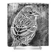 Finch Grungy Black And White Shower Curtain