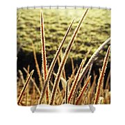 Fingers Of Frost Shower Curtain