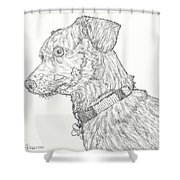Finn In Black And White Shower Curtain