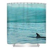 Finspray Shower Curtain