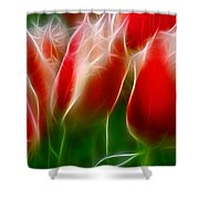 Fire And Ice Fractal Panel 1 Shower Curtain