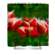 Fire And Ice Fractal Panel 2 Shower Curtain