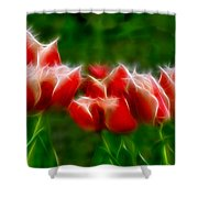 Fire And Ice Fractal  Shower Curtain by Peter Piatt