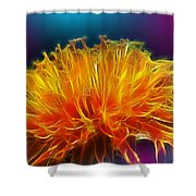 Fire Woven Dandelion Shower Curtain