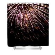 Fireworks Fun 14 Shower Curtain
