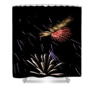 Fireworks Fun 2 Shower Curtain