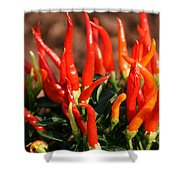 Firey Red Hot Chili Peppers Shower Curtain