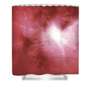 First Angel Shower Curtain