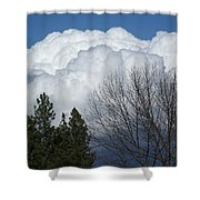 First Day Of Spring 2012 Shower Curtain
