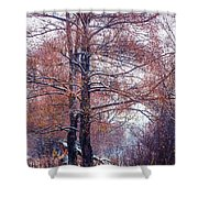 First Snow. Winter Coming Shower Curtain