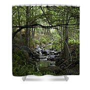 Fish Creek Shower Curtain