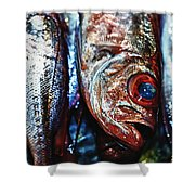 Fresh Fish At The Market Shower Curtain