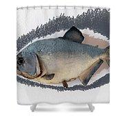 Fish Mount Set 04 C Shower Curtain