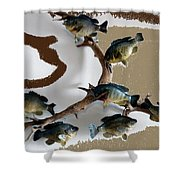 Fish Mount Set 05 C Shower Curtain