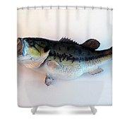 Fish Mount Set 07 A Shower Curtain