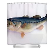 Fish Mount Set 09 A Shower Curtain