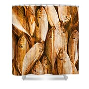 Fish Pattern On Wood Shower Curtain