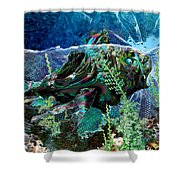 Fish Trouble Shower Curtain
