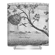 Fisher Bird Shower Curtain