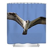 Fisher Shower Curtain