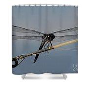 Fishing Bubby Shower Curtain