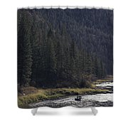 Fishing For Steelhead On The Salmon Shower Curtain