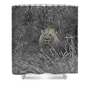Fit For A King Shower Curtain