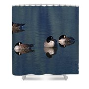 Five Geese Napping Shower Curtain