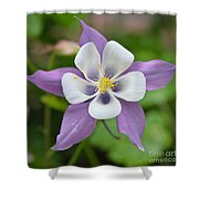 Five Shower Curtain