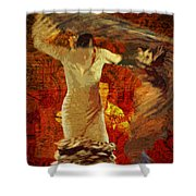 Flamenco Series No 2 Shower Curtain