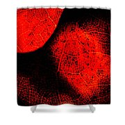 Flaming Foliage Shower Curtain