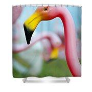 Flamingo 1 Shower Curtain