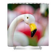 Flamingo 3 Shower Curtain