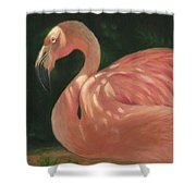 Flamingo In Dappled Light Shower Curtain by Joe Winkler